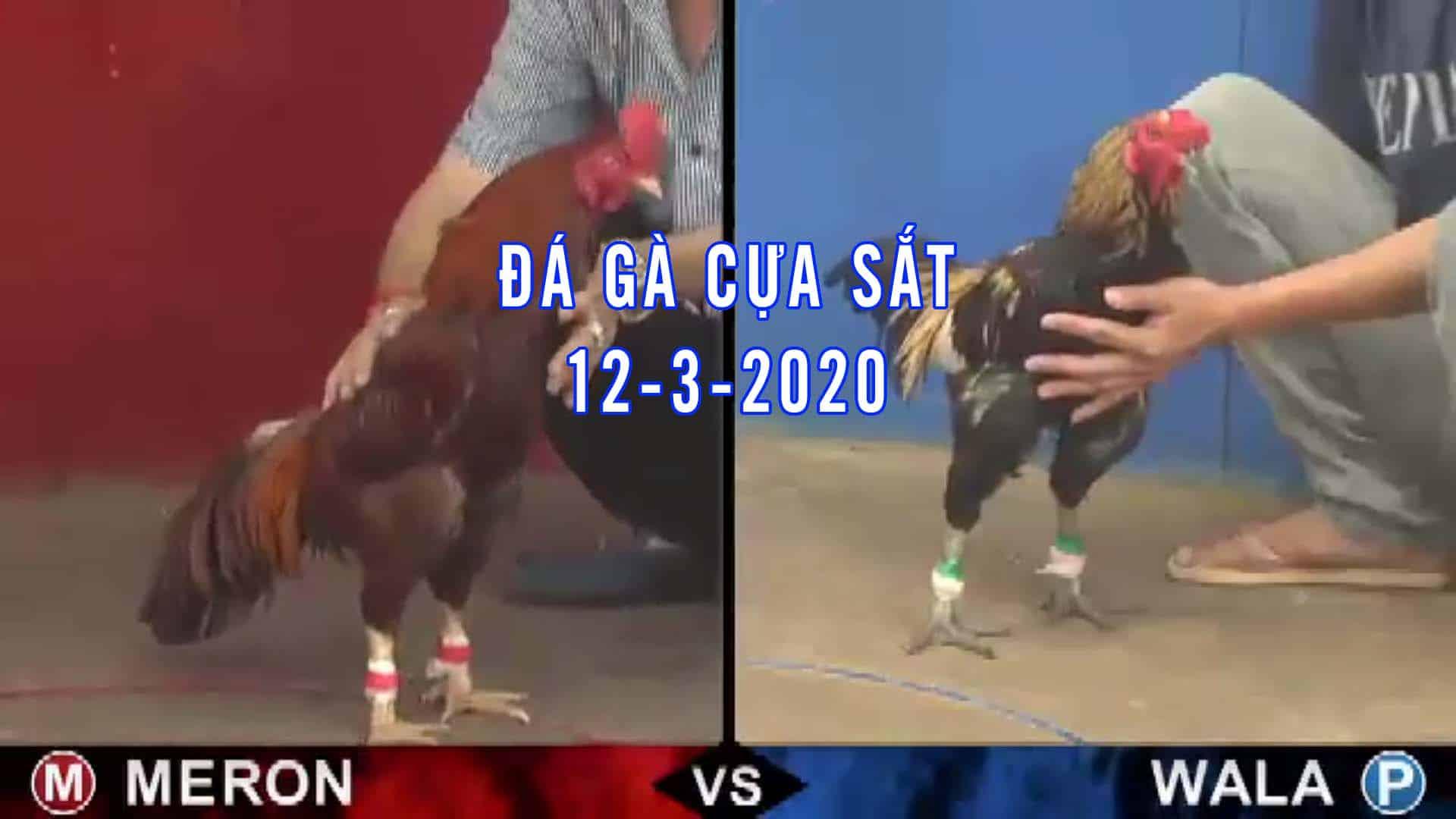 đá gà cựa sắt, đá gà thomo hôm nay, đá gà trực tiếp bình luận viên, đá gà campuchia, da ga ucw88 thứ 5 ngày 12-3-2020
