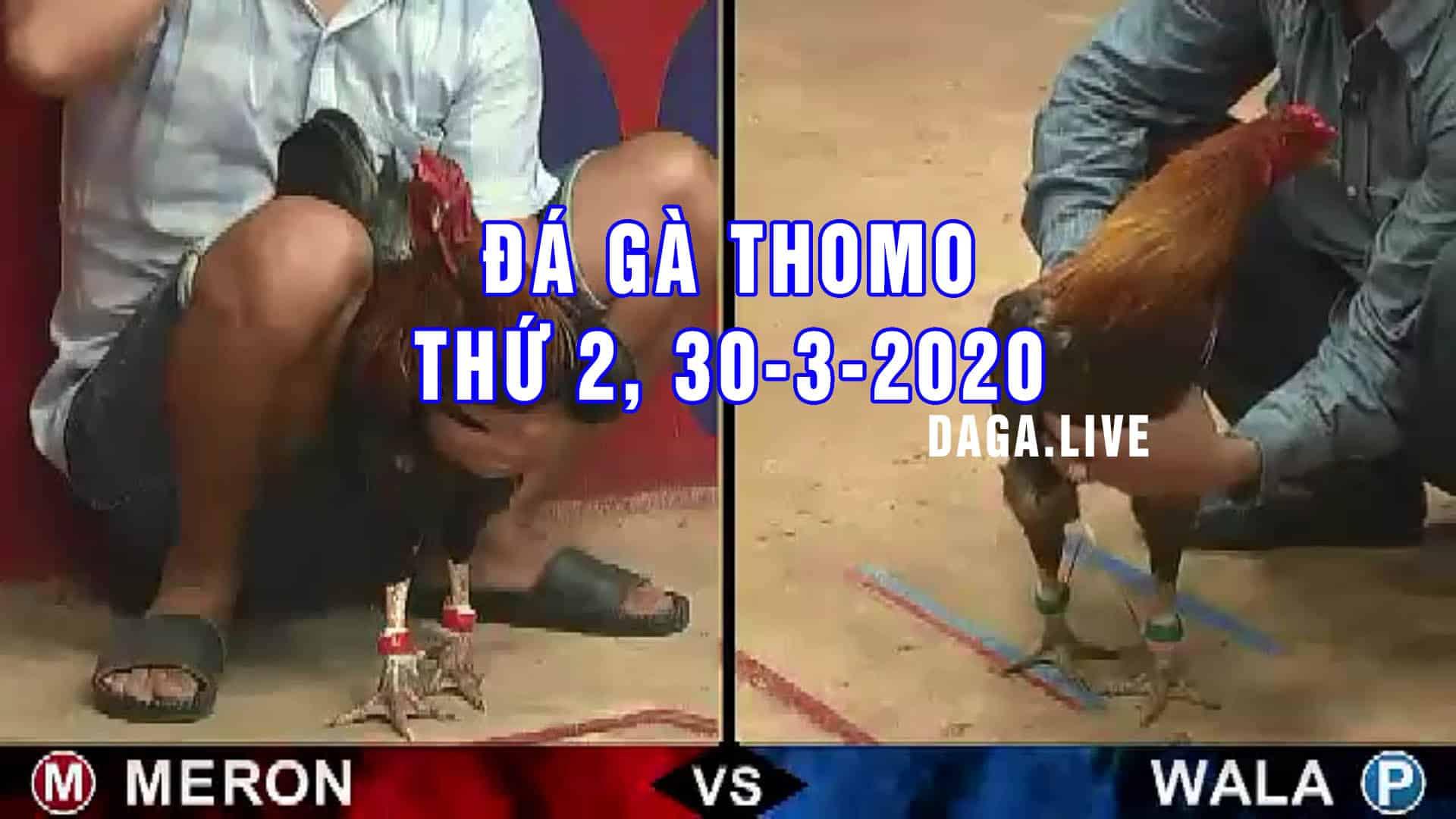 DAGA.LIVE - Đá gà thomo hôm nay, đá gà campuchia, đá gà cựa sắt, đá gà trực tiếp thứ 2 ngày 30-3-2020