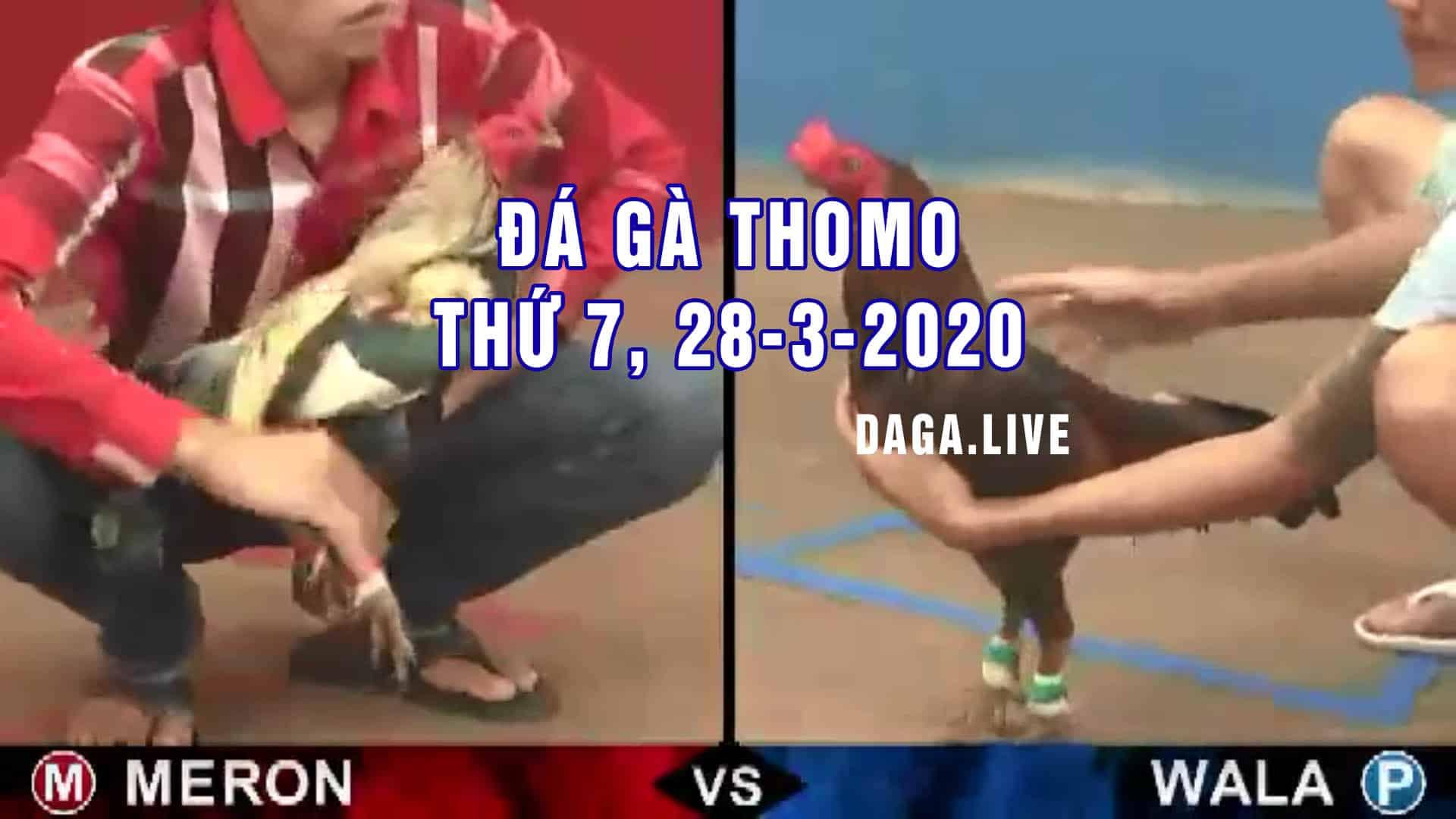DAGA.LIVE- Đá gà thomo hôm nay, đá gà campuchia, đá gà trực tiếp, đá gà cựa sắt thứ 7 ngày 28-3-2020