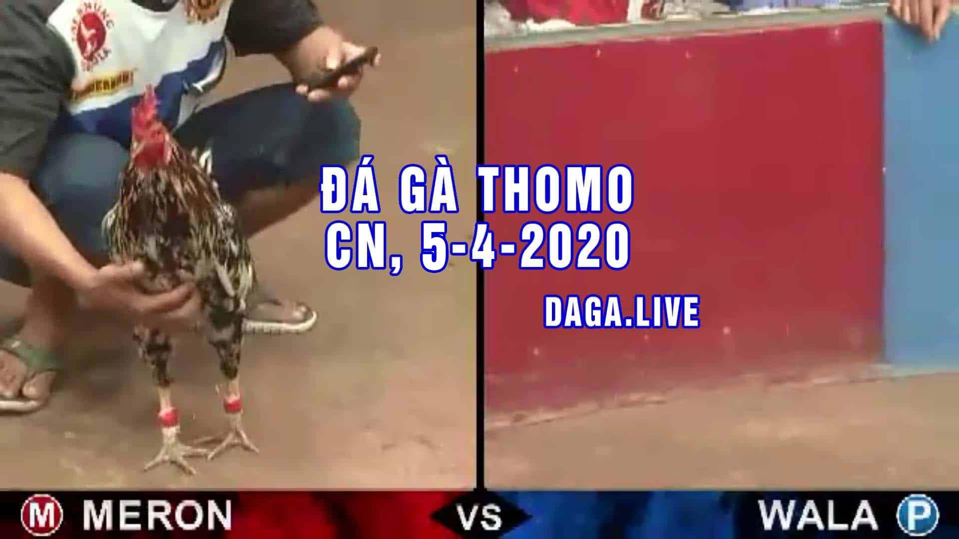 DAGA.LIVE - Đá gà trực tiếp thomo hôm nay, đá gà thomo, đá gà campuchia, đá gà cựa sắt chủ nhật ngày 4-4-2020