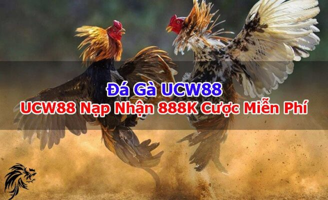 Da-Ga-UCW88-UCW88-Link-Nap-Nhan-888K-Cuoc-Mien-Phi