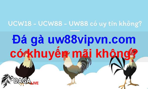 Đá gà uw88vipvn.com có khuyến mãi không?