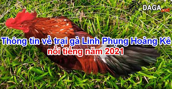 Thông tin về trại gà Linh Phụng Hoàng Kê nổi tiếng năm 2021