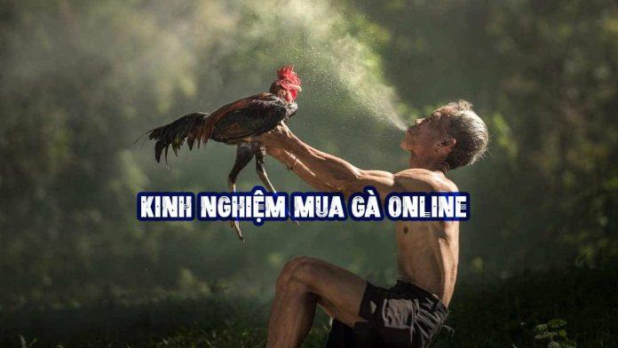 KINH NGHIỆM MUA GÀ ONLINE