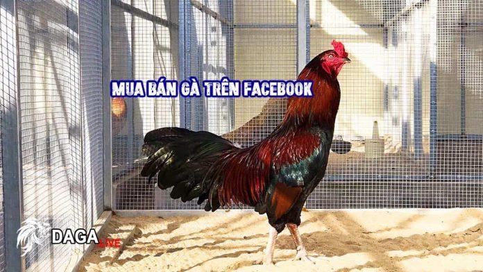 Nói Về Chuyện Mua Gà và Văn Hóa Ứng Xử Trên Facebook.