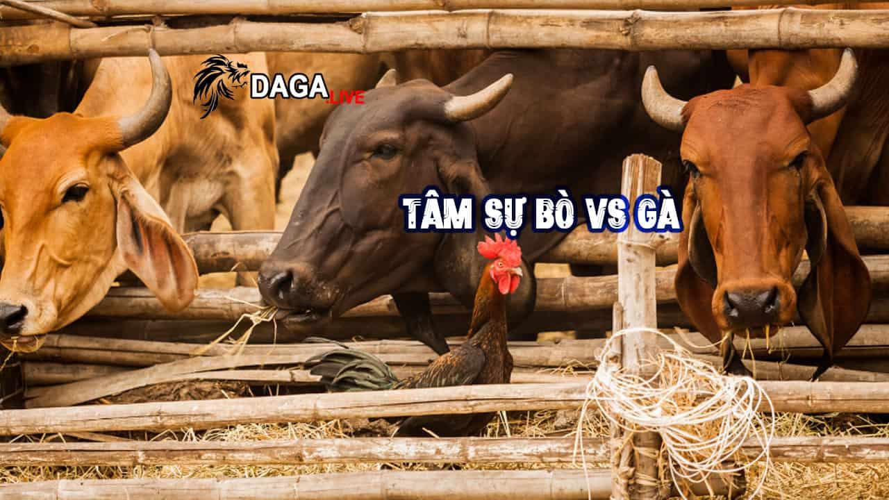 Tâm Sự Gà Và Bò