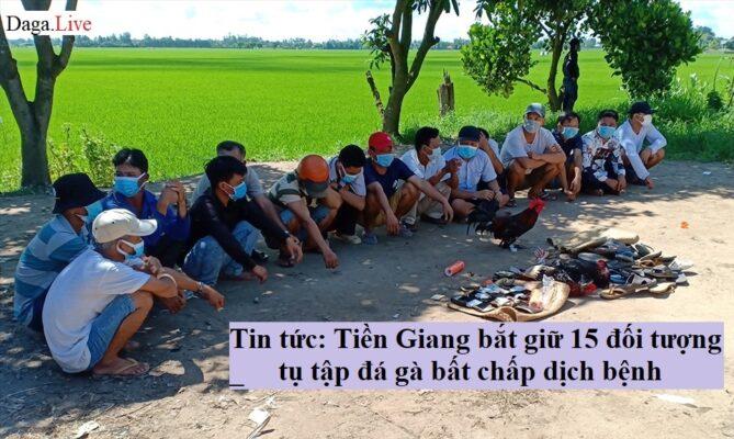 Tin tức: Tiền Giang bắt giữ 15 đối tượng tụ tập đá gà bất chấp dịch bệnh