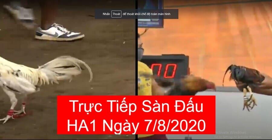 da-ga-truc-tiep-7-8-2020