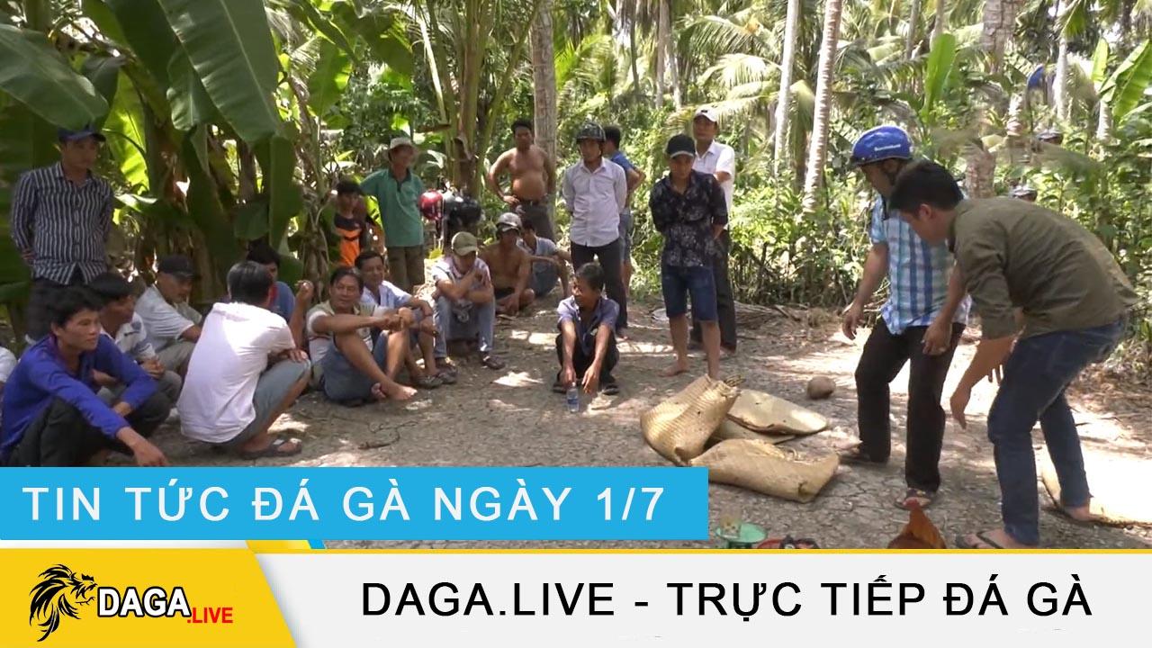 dagalive-tin-tuc-da-ga-1-7