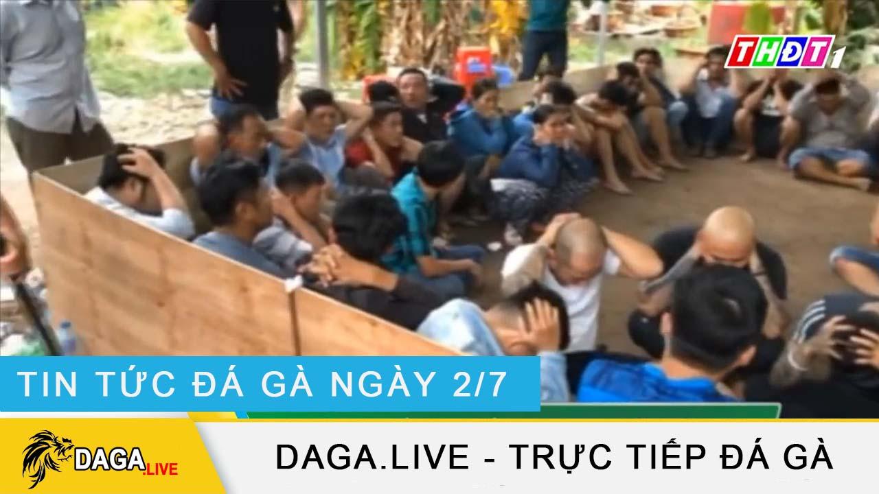 dagalive-tin-tuc-da-ga-2-7