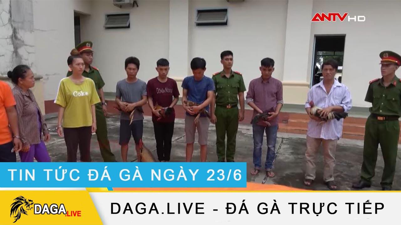 dagalive-tin-tuc-da-ga-23-6