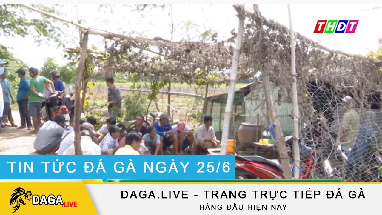 dagalive-tin-tuc-da-ga-25-6
