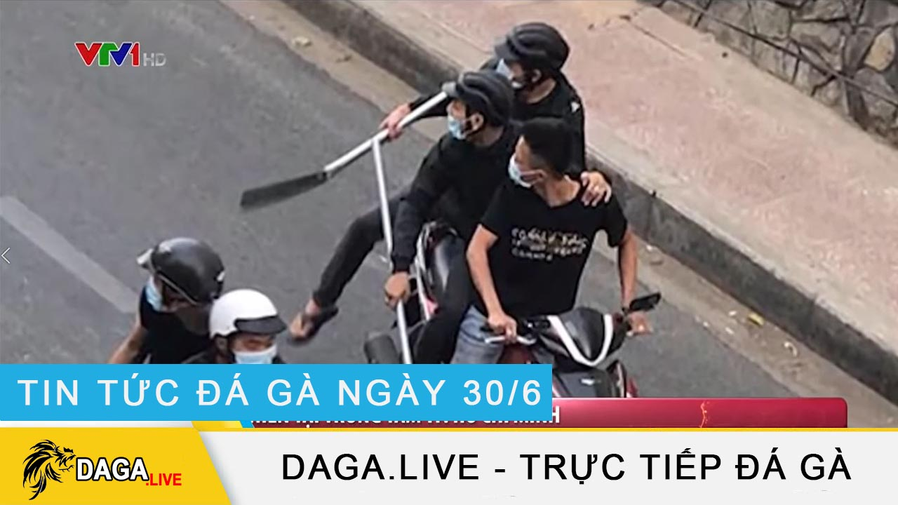 dagalive-tin-tuc-da-ga-30-6