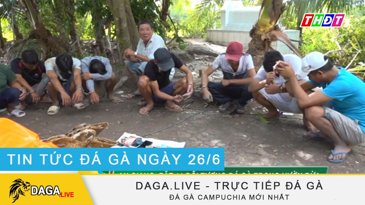 dagalive-truc-tiep-da-ga-26-6