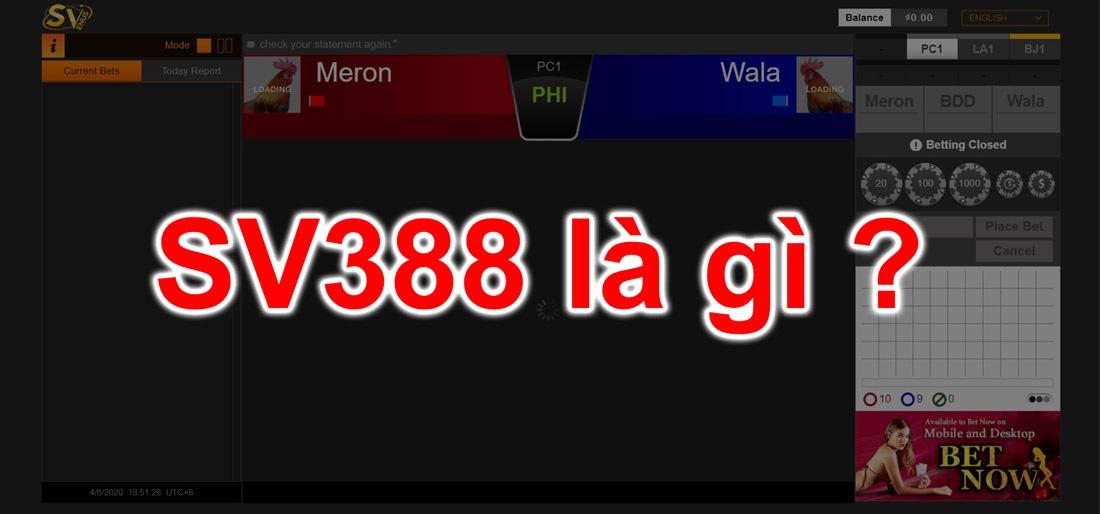 Sv388 là ai ? Giới thiệu đá gà sv3888 .com .net