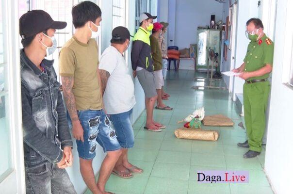 nhóm thanh niên bị bắt vì tụ tập đá gà ăn tiền