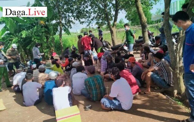 Rạch Giá: Công an bắt quả tang 33 đối tượng đá gà ăn tiền
